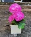 Hiasan Bunga Dahlia Merah Muda