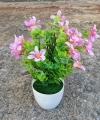 Bunga Summer Daisy Pink