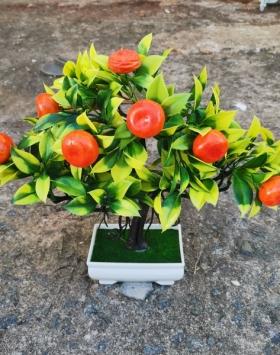 Hiasan Bonsai Buah Warna Orange