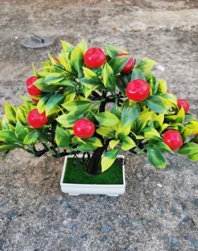 Hiasan Bonsai Buah Merah