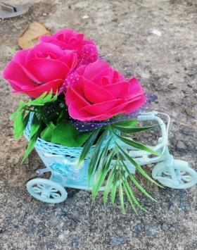 Bunga Sepeda Warna Merah Muda
