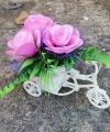 Bunga Sepeda Warna Pink Muda