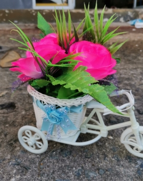 Bunga Sepeda Warna Pink