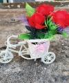 Bunga Sepeda Warna Merah