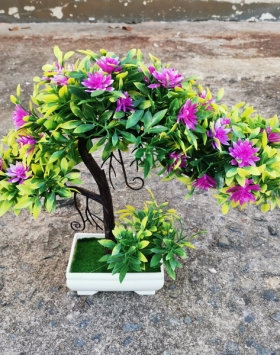 Hiasan Bunga Mandevilla