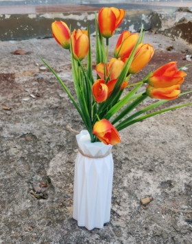 Bunga Sprenger's Tulip Warna orange