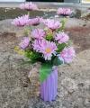 Hiasan Bunga Aizoaceae