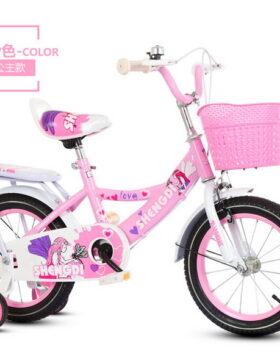 Sepeda Anak Ukuran 14 Inch Motif Peri Cantik