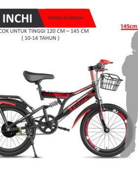 Terbaru Sepeda Gunung Anak 20 Inchi Impor