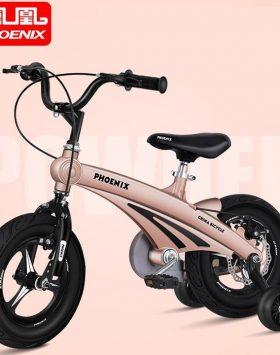 Sepeda Anak Phoenix Ukuran 16 inch